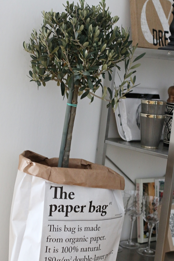 the_paper_bag_lantliv